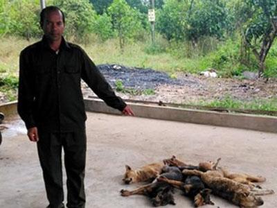 Kẻ trộm chó bị dân làng vây đánh ngất xỉu