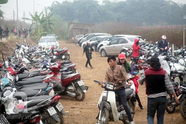 Hà Nội: Bất chấp trời lạnh và mưa, hàng nghìn người đổ về làng hoa Nhật Tân chụp ảnh - Ảnh 4.