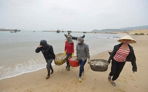Ô nhiễm môi trường biển 4 tỉnh miền Trung do Formosa gây ra là sự cố môi trường cực kỳ nghiêm trọng, được dư luận cả nước quan tâm, nhưng không lọt tốp 10 sự kiện nổi bật ngành tài nguyên và môi trường năm 2016.
