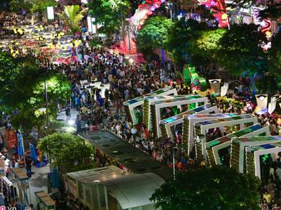 Hàng nghìn người chen chúc đêm khai mạc đường hoa Nguyễn Huệ