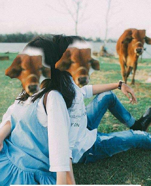 """Cặp đôi lên mạng nhờ """"xoá hộ con bò"""" và cái kết khiến dân tình cười đau ruột - 7"""