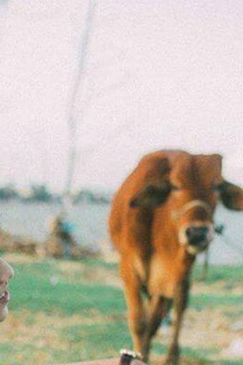 """Cặp đôi lên mạng nhờ """"xoá hộ con bò"""" và cái kết khiến dân tình cười đau ruột - 9"""