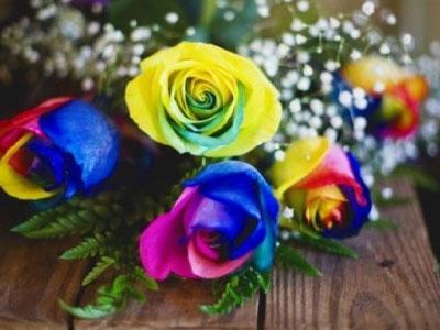 Những món quà tiền triệu ngày Valentine