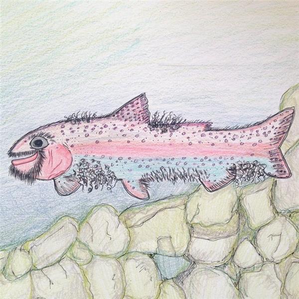 Cá bị nhiễm một số loại vi khuẩn và nấm mốc khiến cơ thể mọc đầy lông.