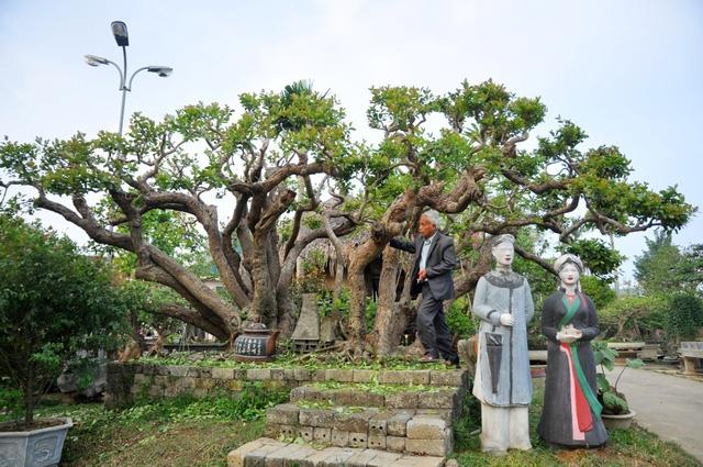 Vườn cảnh tiền tỷ của lão nông chơi cây nổi tiếng Hà thành - 2