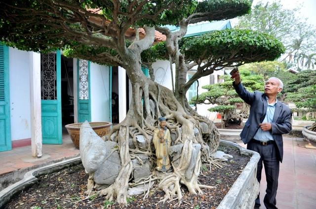 Vườn cảnh tiền tỷ của lão nông chơi cây nổi tiếng Hà thành - 8
