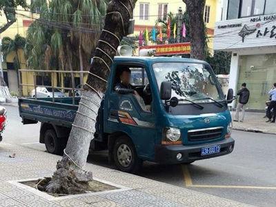 Đà Nẵng phạt nguội xe biển xanh đậu sai quy định từ phản ánh của người dân qua Facebook