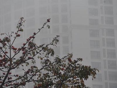 Chùm ảnh: Hà Nội mờ ảo trong sương mù dày đặc ngày cuối tuần