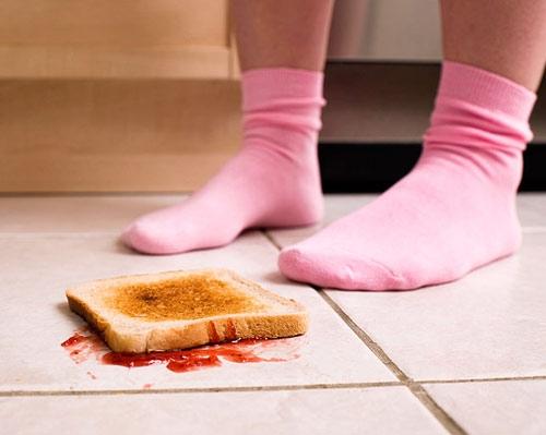 """Khoa học chứng minh """"thức ăn rơi xuống đất 5 giây, thổi phù ăn ngay được"""""""