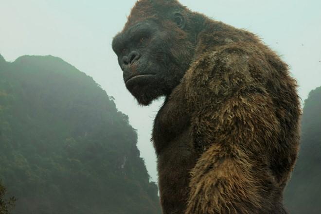 'Kong: Skull Island' thu 104 ty dong tai Viet Nam sau 7 ngay hinh anh 1