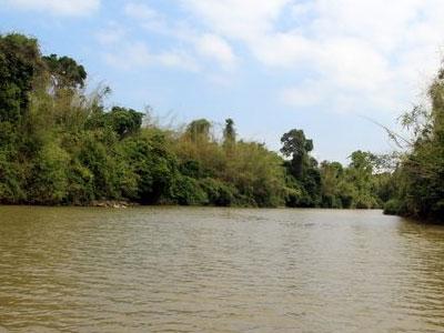 Trưởng trạm kiểm lâm Vườn quốc gia Cát Tiên bị thợ săn đâm gục