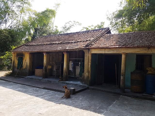 Cây sưa trong khu vườn rộng khoảng 2.000m2 và ngôi nhà cổ của chủ nhân