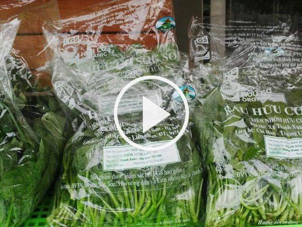 Video: Thị trường rau hữu cơ: Thật - giả lẫn lộn
