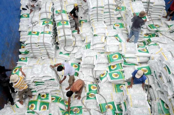 """Hoạt động xuất khẩu gạo đang có """"sóng ngầm"""" vì mâu thuẫn lợi ích giữa các doanh nghiệp /// Ảnh: Diệp Đức Minh"""