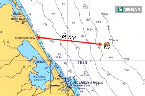 Chuyện hy hữu: Bị trôi lạc ra biển 15km, chú voi rừng may mắn được hải quân cứu sống - Ảnh 1.