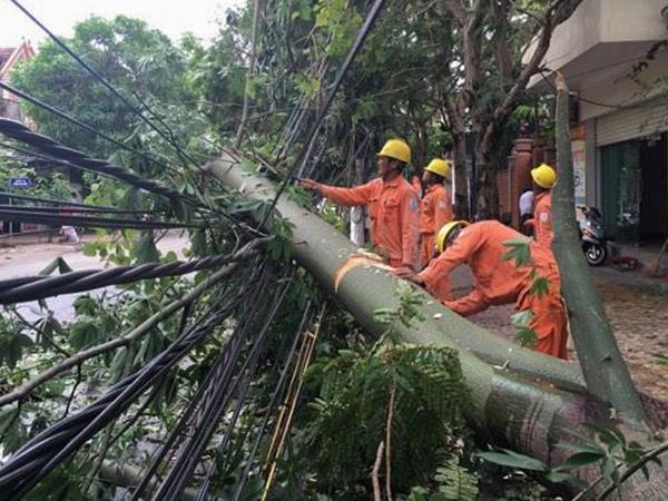 Điện lực thiệt hại hàng chục tỷ đồng sau bão số 2 Talas