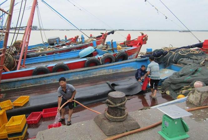 Ngư dân Hà Tĩnh, Nghệ An được lệnh cấm ra khơi. Ảnh: P.V.