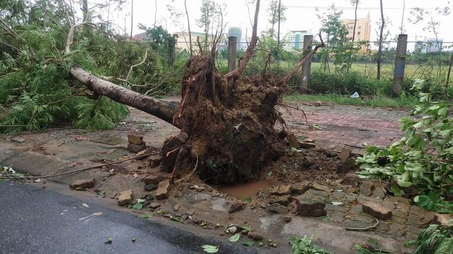 Hình ảnh tan hoang sau cơn bão số 2 ở miền Trung - Ảnh 4.