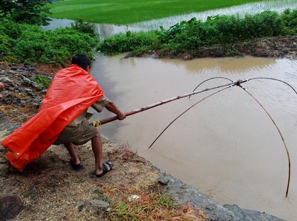 Sau mưa bão, người Hà Nội cất vó đánh cá cạnh các Khu đô thị mới - Ảnh 4.