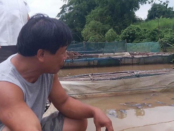 40 tấn cá bị chết do xả lũ: Kiến nghị thủy điện Hòa Bình hỗ trợ