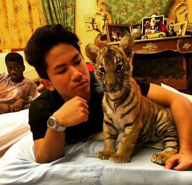 Hoang tu Brunei dien trai 'gay bao' khi tham gia SEA Games hinh anh 5