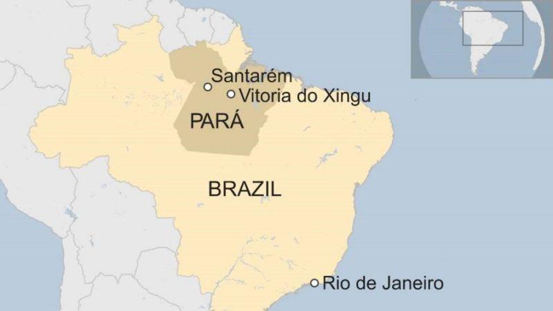 chim-tau-o-brazil