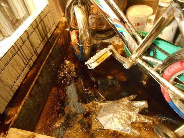 Nhà của nhà báo Hải Châu bị ném dầu luyn khủng bố