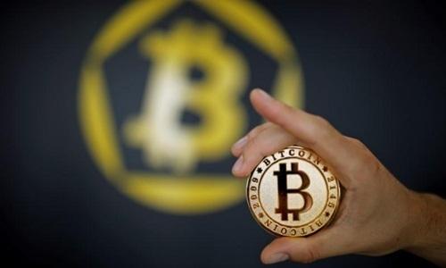 con-sot-nhap-trau-cay-bitcoin-1
