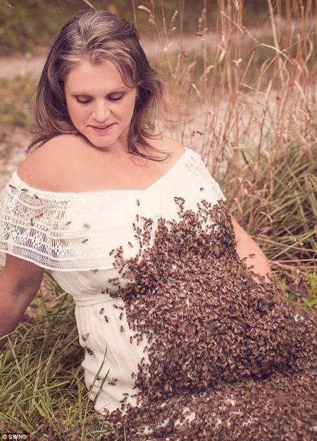 ba-bau-chup-anh-voi-20-nghin-con-ong