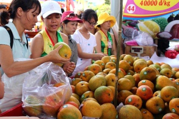 Nhiều mặt hàng xuất khẩu của Việt Nam đang phụ thuộc duy nhất vào thị trường Trung Quốc (ảnh minh hoạ)