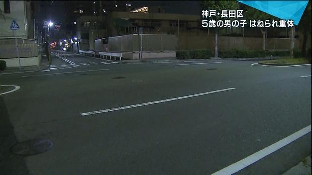 Bé trai người Việt hôn mê bất tỉnh vì bị xe tông trúng khi sang đường một mình ở Nhật Bản - Ảnh 1.