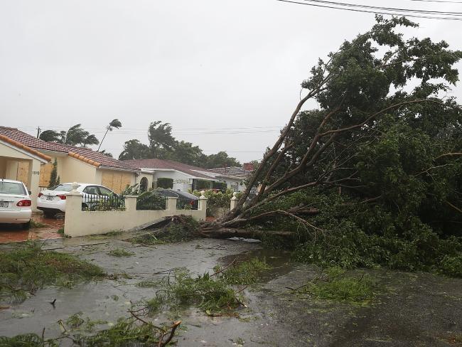 Sinh con tại nhà vì bác sĩ bị kẹt bão Irma - Ảnh 1.