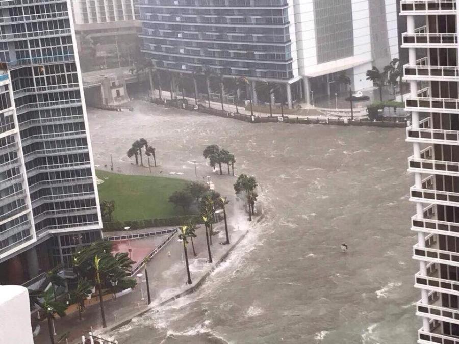 Nguoi goc Viet o Florida tranh thu bao Irma de 'nghi ngoi' hinh anh 2