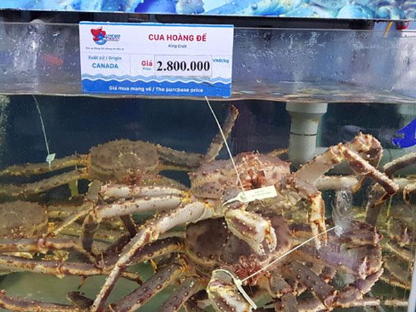 Hải sản nhập ngoại tiền triệu vẫn đắt hàng, Bộ Nông nghiệp nói gì?