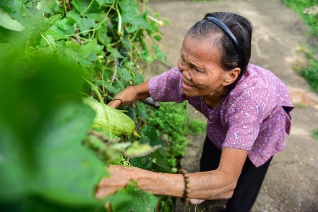 Cụ Liên tự tạo niềm vui cho mình bằng cách trồng rất nhiều rau, có đủ loại như mướp, rau ngót, rau muống...