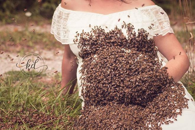 Bí mật bất ngờ phía sau bức hình mẹ bầu chụp hình cùng hàng ngàn con ong - Ảnh 6.