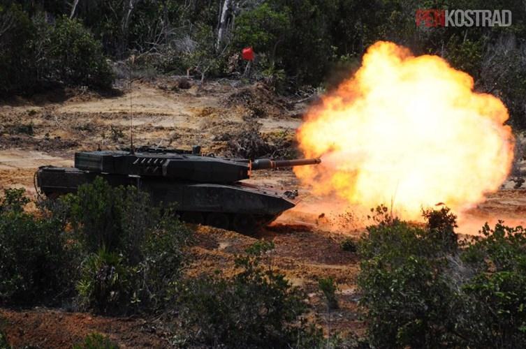 Can canh sieu tang Leopard 2RI cua lang gieng Indonesia-Hinh-2