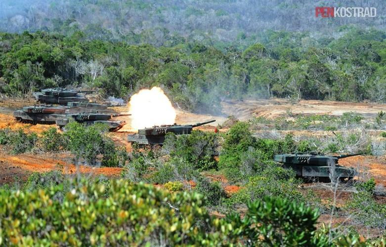 Can canh sieu tang Leopard 2RI cua lang gieng Indonesia-Hinh-3