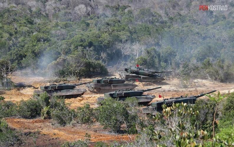 Can canh sieu tang Leopard 2RI cua lang gieng Indonesia-Hinh-4
