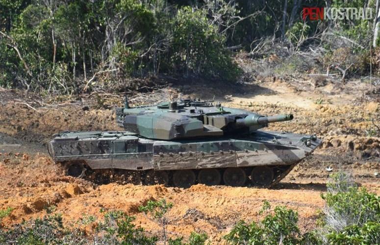 Can canh sieu tang Leopard 2RI cua lang gieng Indonesia-Hinh-5