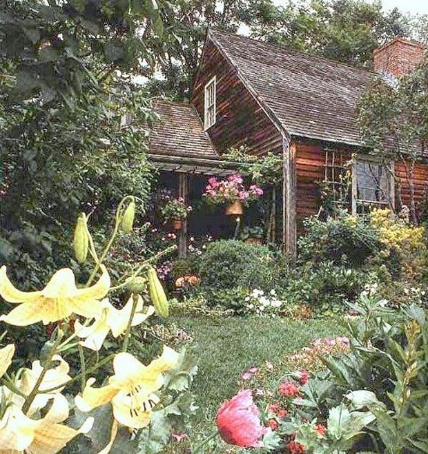 Ngôi nhà cổ tích có thật của bà cụ 92 tuổi khiến ai ai cũng phải trầm trồ, ước mơ - Ảnh 1.