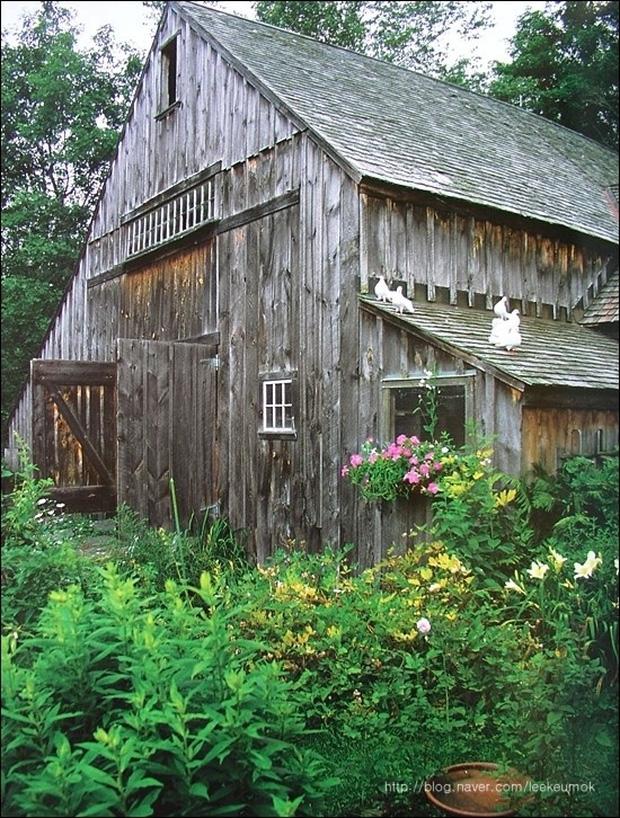 Ngôi nhà cổ tích có thật của bà cụ 92 tuổi khiến ai ai cũng phải trầm trồ, ước mơ - Ảnh 2.