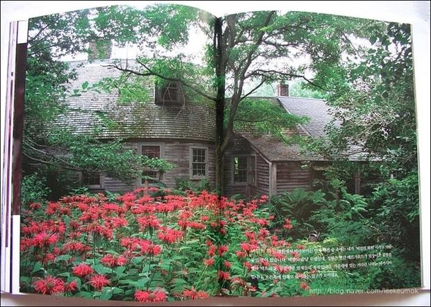 Ngôi nhà cổ tích có thật của bà cụ 92 tuổi khiến ai ai cũng phải trầm trồ, ước mơ - Ảnh 6.