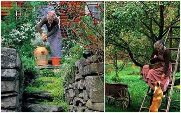 Ngôi nhà cổ tích có thật của bà cụ 92 tuổi khiến ai ai cũng phải trầm trồ, ước mơ - Ảnh 20.