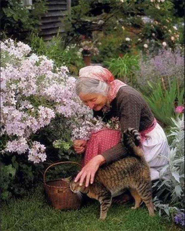 Ngôi nhà cổ tích có thật của bà cụ 92 tuổi khiến ai ai cũng phải trầm trồ, ước mơ - Ảnh 23.