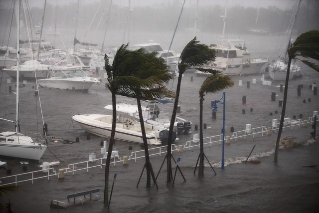 Trước đó, bão Irma đã khiến ít nhất 37 người thiệt mạng, bao gồm 10 người ở Cuba, và gây ra thiệt hại nặng nề về vật chất khi siêu bão này đổ bộ vào một loạt các đảo ở vùng Caribe.