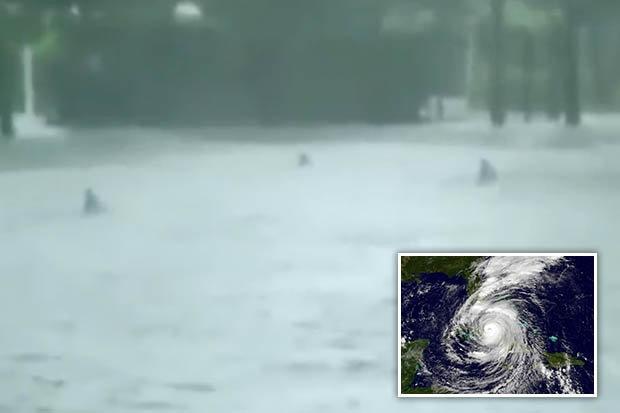 """Mỹ: Đàn cá mập bơi lội trên phố sau siêu bão """"quái vật""""? - 1"""