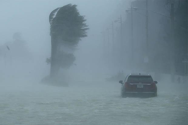 """Mỹ: Đàn cá mập bơi lội trên phố sau siêu bão """"quái vật""""? - 2"""