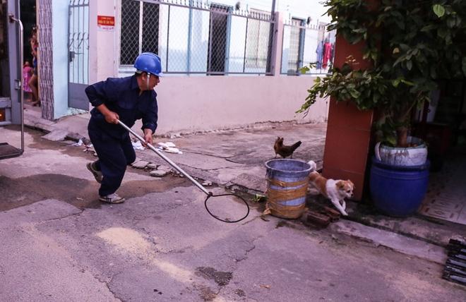 Thực hư thông tin giả mạo Đội săn bắt chó TP HCM để bắt chó nhà dân - Ảnh 1.