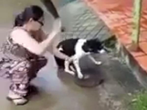 Người phụ nữ dùng dao chặt chân chú chó dã man lên tiếng: